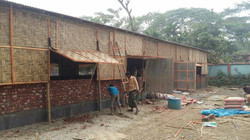 New Cow Shed with the capacity for 5