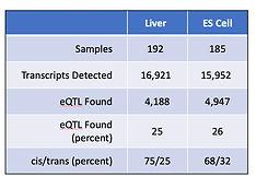 liver vs ES clean.jpg