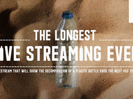 WWF simples e impactante: a live mais longa da história não é para comemorar
