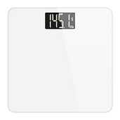 Weight Scale.png