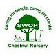 Chestnut nuresry.png