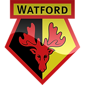FAVPNG_watford-f-c-premier-league-fa-cup