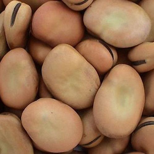 Mojo Wishing Beans .5 Oz. Package