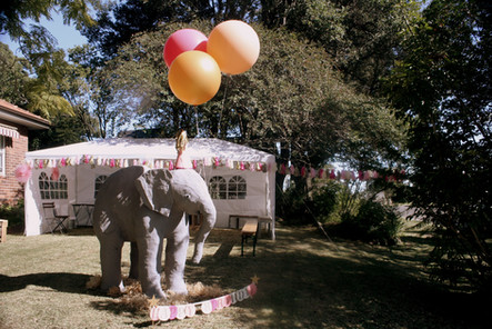 Circus-themed birthday styling