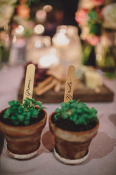 Bespoke potted herb favours