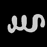 weiward_logo%20(11)_edited.png