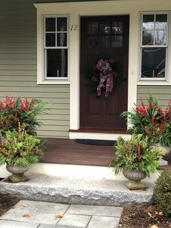 Colorful winter planters