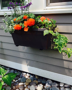 Window boxes are fun to mix it up. Another favorite of mine! 💕Transformation Begins Here! 617.962