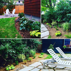 46 perennials & 4 shrubs turned this patio into a beautiful backyard hang out! #simplydone #planting