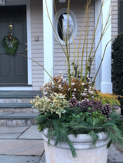 beautiful winter containers