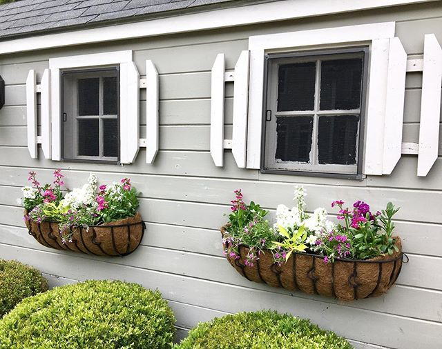 Love this client's shed windows & window boxes - so fun to design with lots of color & texture