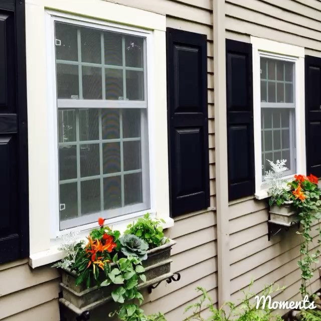 Fall window boxes are in! Seemed fitting to play _Take me home tonight_ -the window boxes silly..