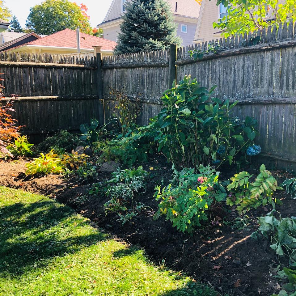 Garden resurrected