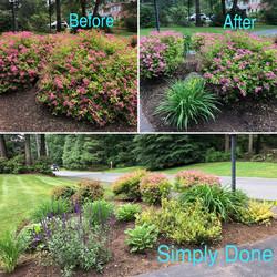 Garden Maintenance ideas