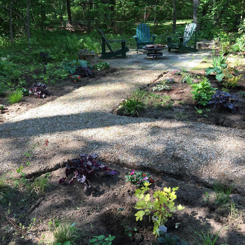 Hidden backyard garden comes to life