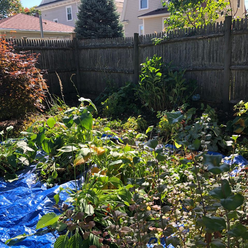 Wheres my garden?