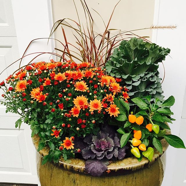 SIMPLYDONE creates a stunning display of gorgeous color right outside your door. #welcomehome #conta