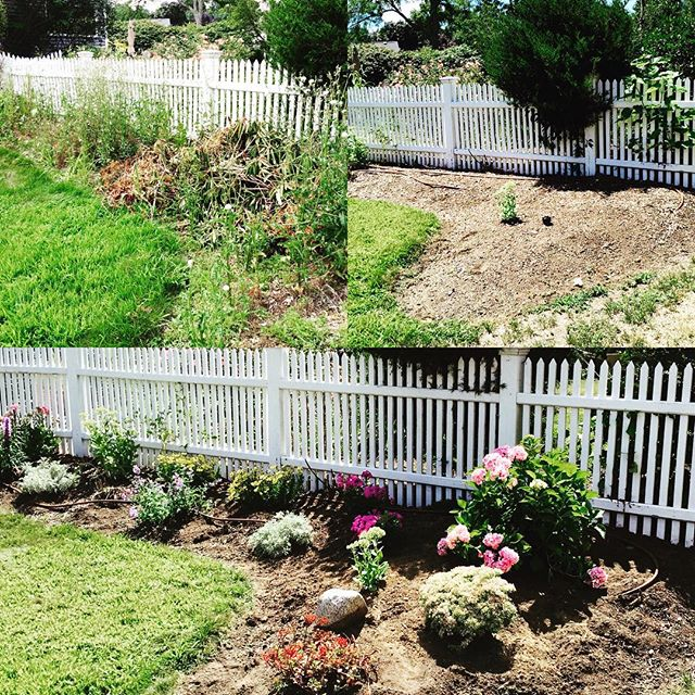 Resurrecting gardens #landscaping design #flowers #gardening