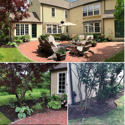 Backyard landscape refresh