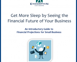 Endorphin Advisors Publishes New Book about Financial Projections for Small Businesses