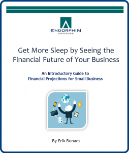 Financial Projections eBook Cover