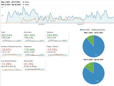 SEO Case Study   More than 262% Increase in Website Visitors in 90 Days.
