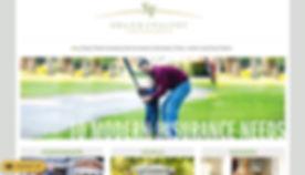 S&F Website.jpg