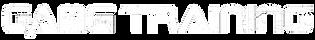 GT-logo-white.png