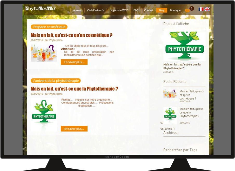 Site Phytocosmo vue page blog