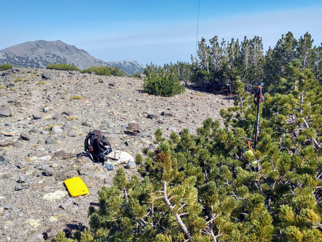 Mount Houghton W7N/WC-002 Activation