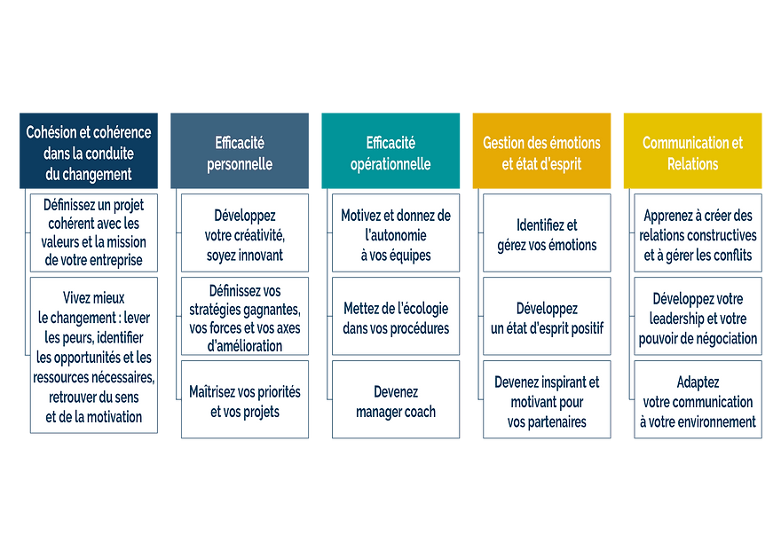 Nos domaines d'intervention : communication et relations, gestion des émotions et état d'esprit, efficacité personnelle et opérationnelle, conduite du changement.