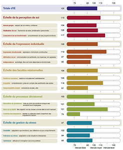 Rapport Diagnostic Quotient Emotionnel Intelligence Emotionnelle EQ-i 2.0 EQ-i 360 MHS