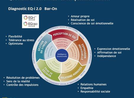 QE : Les compétences émotionnelles