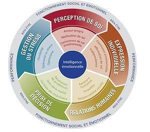 Diagnostic EQ-i Intelligence Emotionnelle