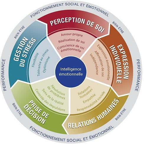 Diagnostic Quotient Emotionnel EQ-i LEADERSHIP