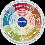 Diagnostic Quotient Emotionnel Intelligence Emotionnelle EQ-i 2.0 EQ-i 360 MHS