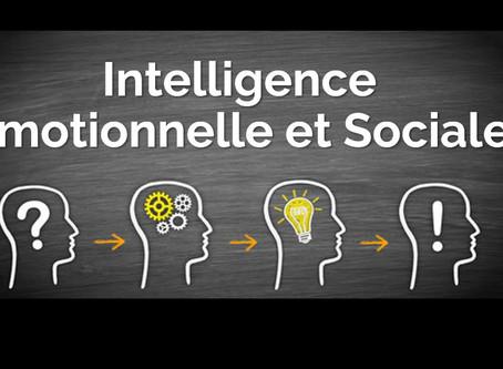 Groupe Meetup à Genève dédié à l'Intelligence Émotionnelle et Sociale