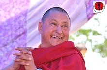 drubpon tharchin rinpoche ladakh