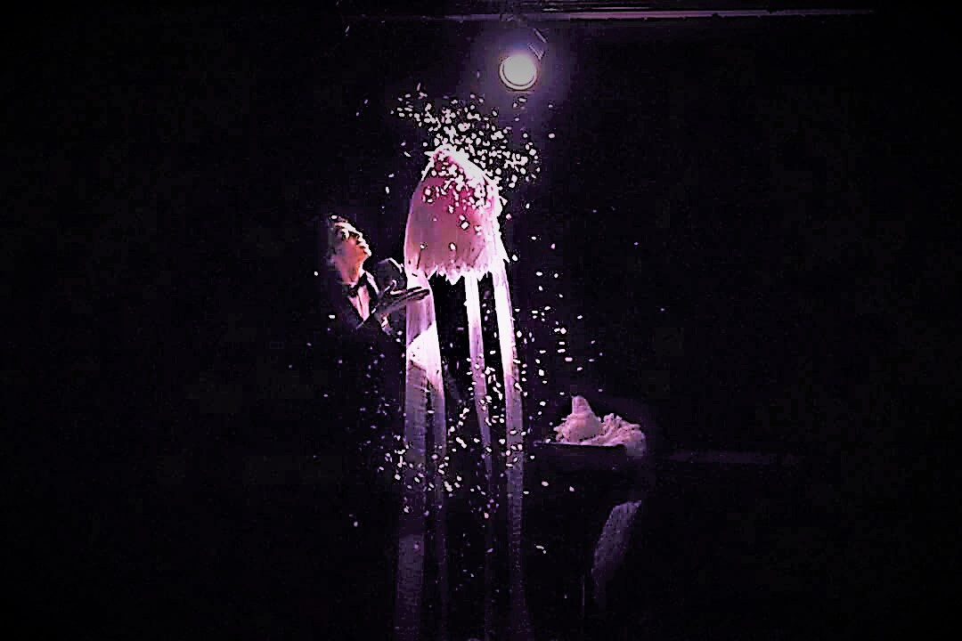 早稲田康平|マジシャン派遣・出張サービス|【Agu Entertainment(アグエンタテイメント).jpg