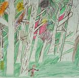 En pleine forêt 4