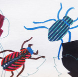 Insectes 2 (détail)
