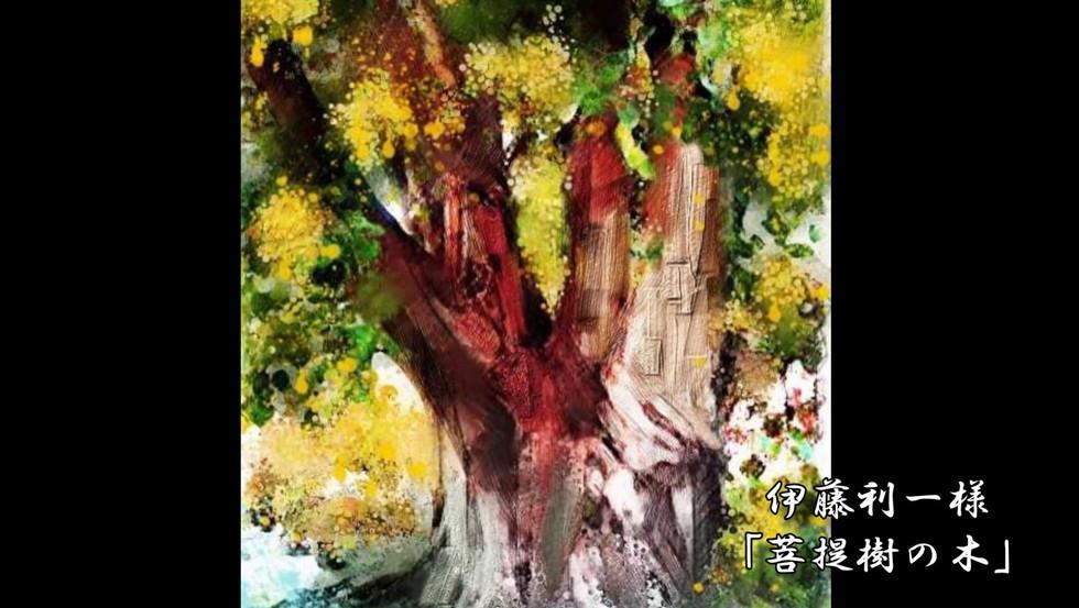 アートの翼_0823_菩提樹.mp4