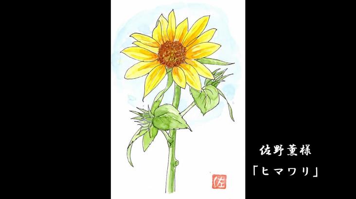 03_誕生花ひまわり作品集_0802.mp4