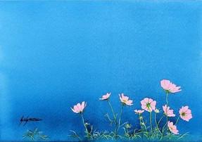 08_Susumu Yoshida様「コスモス」.jpg