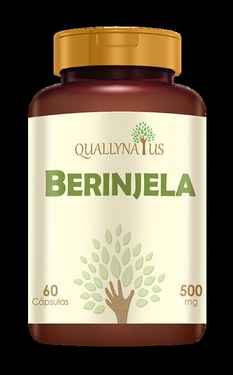 berinjela fibras intestino saúde benefícios produtos naturais