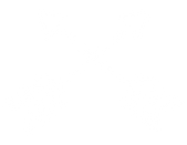 Crossed Arrows White.png