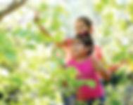 iStock-GirlsExploreNature.jpg