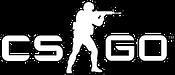 VISU Gaming CSGO.png