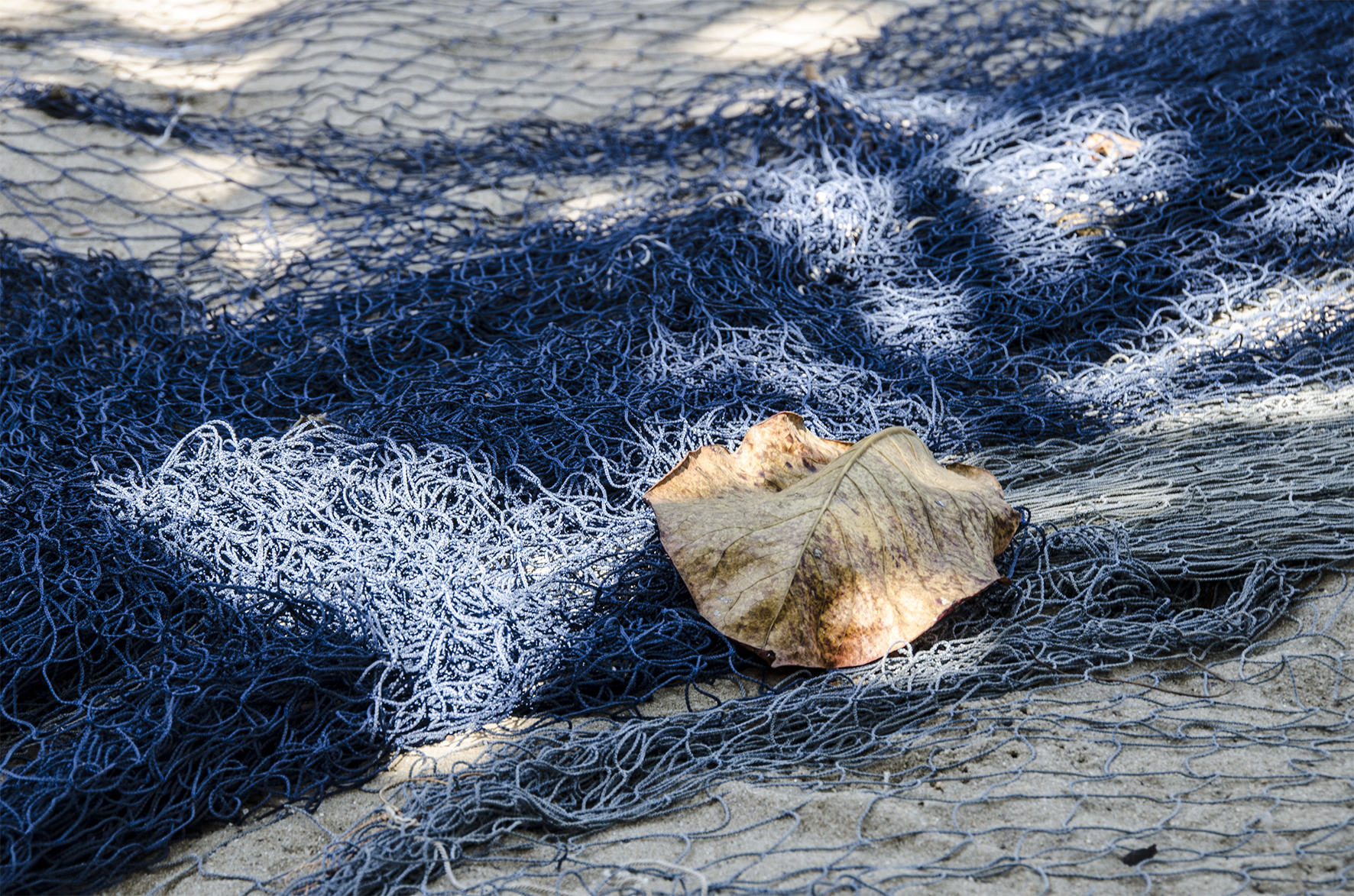 FISHING NET 1