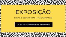 Exposição Ervas e seus Orixás, por Luzia Castaneda, Fnac Campinas